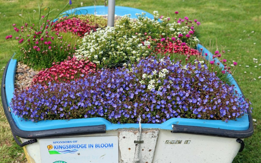 Britain in Bloom Finals – Kingsbridge