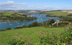 Salcombe and Kingsbridge – Site of Special Scientific Interest – The Citation
