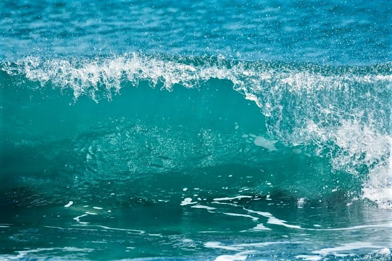 Marine Climate Change Impact Partnership 2020 Report
