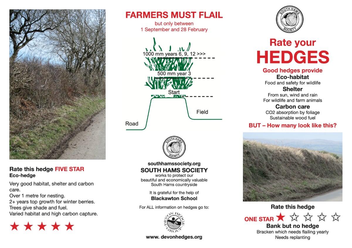SHS hedges